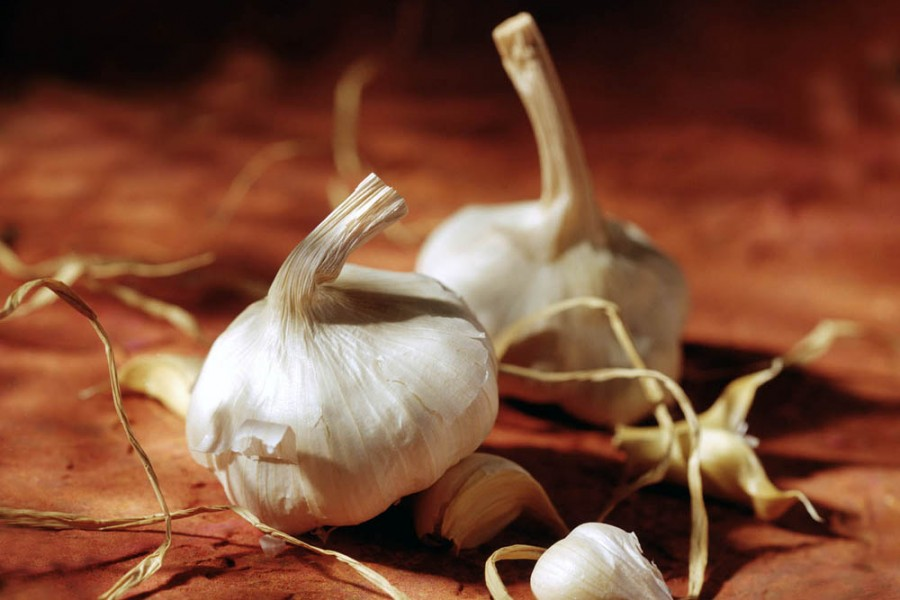 garlic food photography