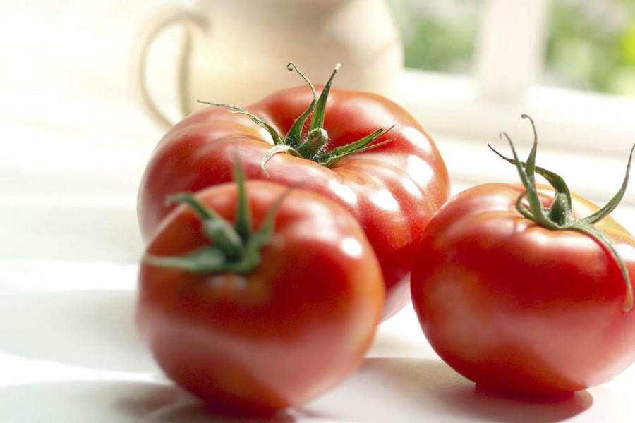 food photography of tomatoes